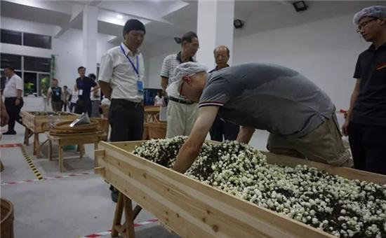 我市花茶制作技艺(福州茉莉花茶窨制工艺)入选国家级非遗代表性项目保护实践优秀案例